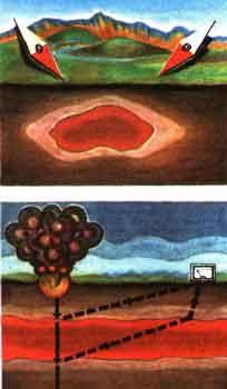 Электронная энциклопедия *Земля* 1570-2.jpg