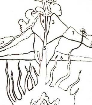 Электронная энциклопедия *Земля* 1790-3.jpg
