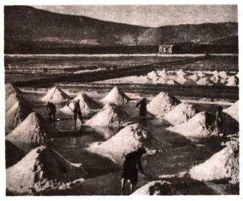Электронная энциклопедия *Земля* 1850-1.jpg