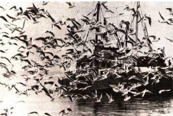 Электронная энциклопедия *Земля* 1860-5.jpg