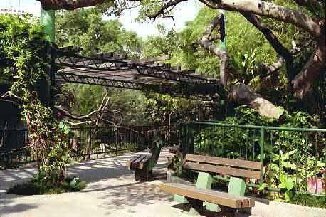Китай Гонконг: Городской Парк за стеной в Каулуне