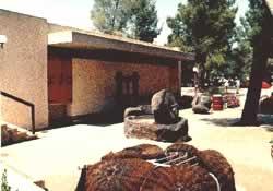 Археологический музей в кибуце Эйн Дор