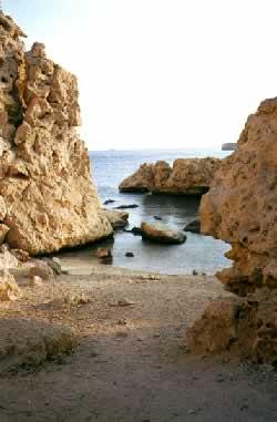 Египет. На Синайском полуострове. Фото И. Торика