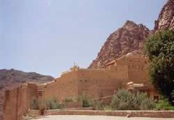 Египет. Синай. Фото И. Торика