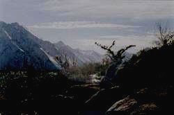Заповедник АЗАС - пейзаж