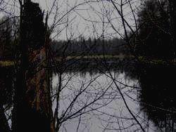 МОРДОВСКИЙ ЗАПОВЕДНИК - озеро Пичерки