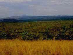 поочередная смена природных зон Рувубу