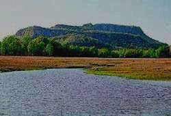 Пейзаж Национального Парка Бандхавгарх