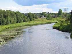 Река Цна  (приток Мокши)
