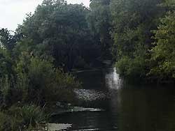 Река Ведуга