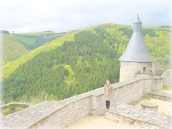 Башня замка Бершейд